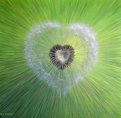 Coeur armure