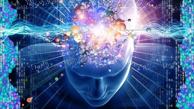 Cerveau univers