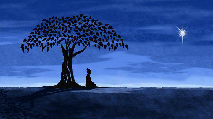 méditant arbre