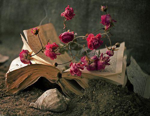 livre fleurs