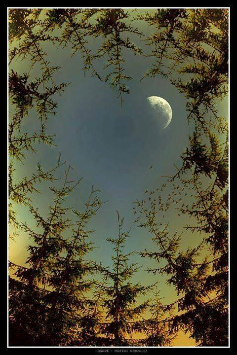 ImAGE lune et coeur