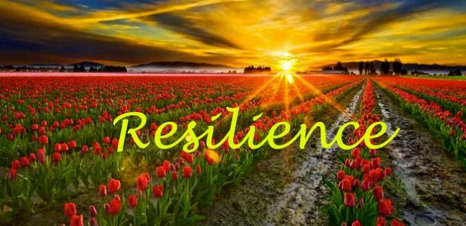 Resilience-14-12-15