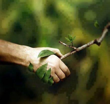 respect_nature