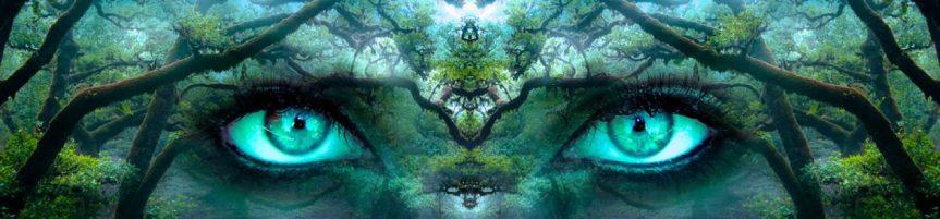 cropped-eveil-tv-conscience-pixabay.jpg