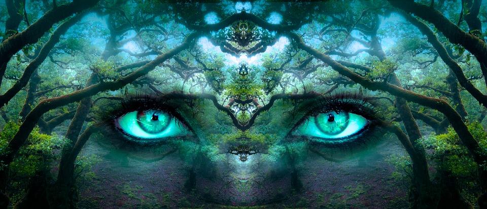 eveil-tv-conscience-pixabay
