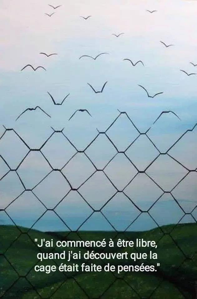 cage pensées