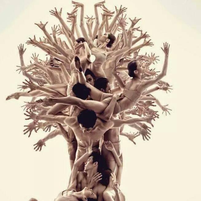 cropped-image-arbre-humain