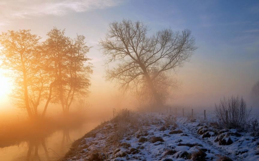 Fog-trees-snow-sunrise-winter-hazy_2560x1600