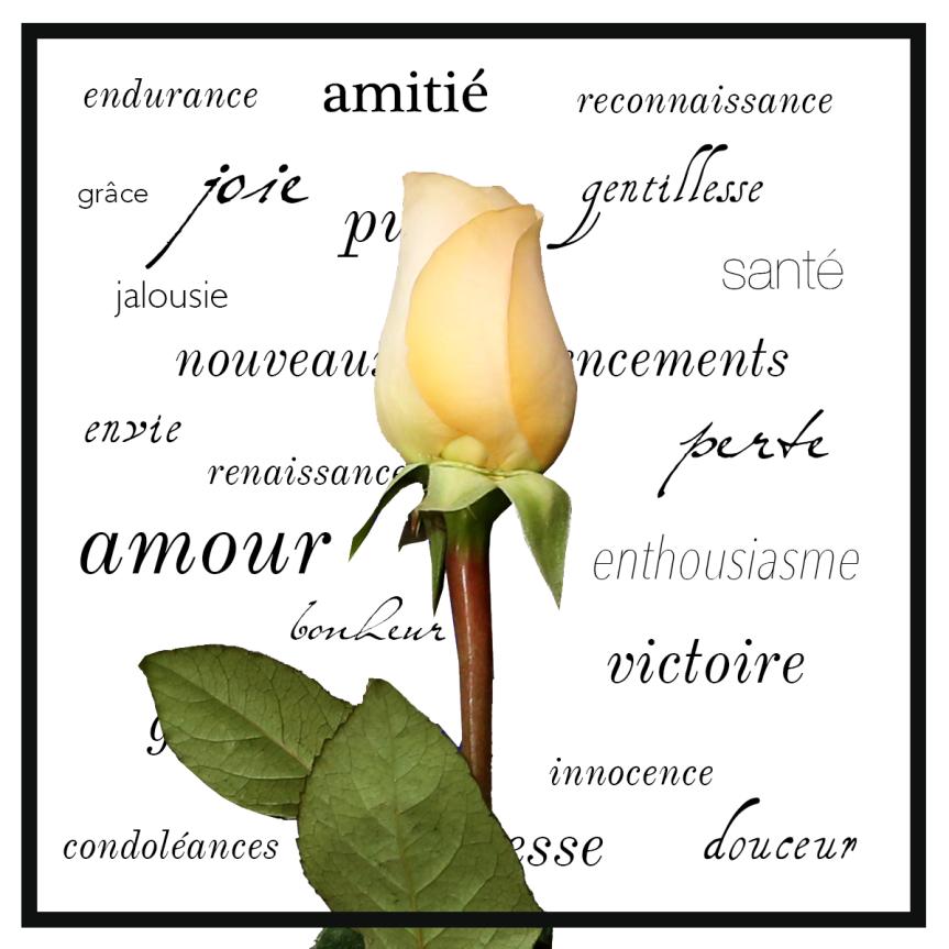 fleur mot